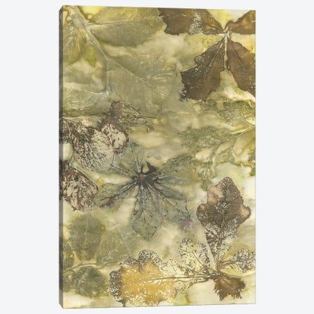 Eco Print II Canvas Print #KPH2} by Kathryn Phillips Canvas Artwork