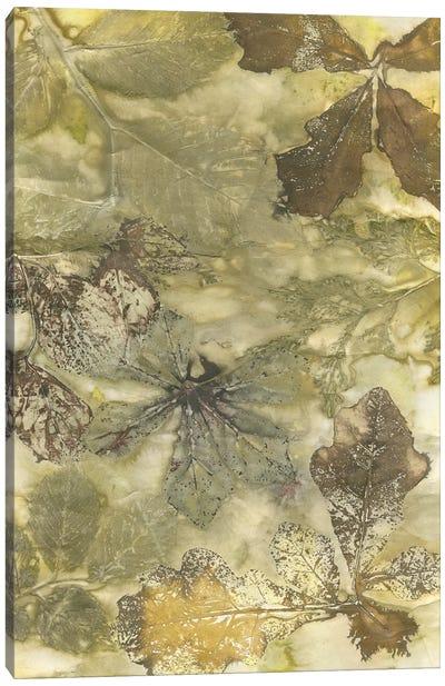Eco Print II Canvas Art Print