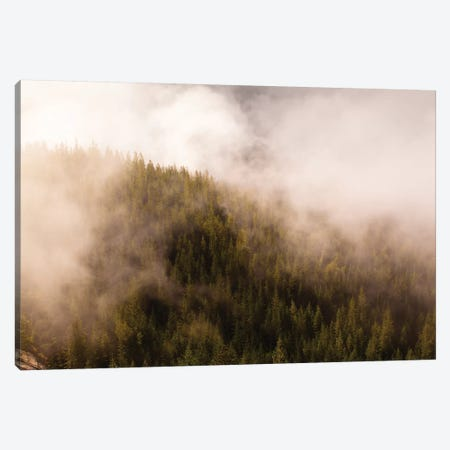 Mist Over The Trees In Squamish, British Columbia, Canada Canvas Print #KPI6} by Kristin Piljay Canvas Art