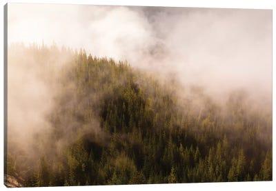 Mist Over The Trees In Squamish, British Columbia, Canada Canvas Art Print