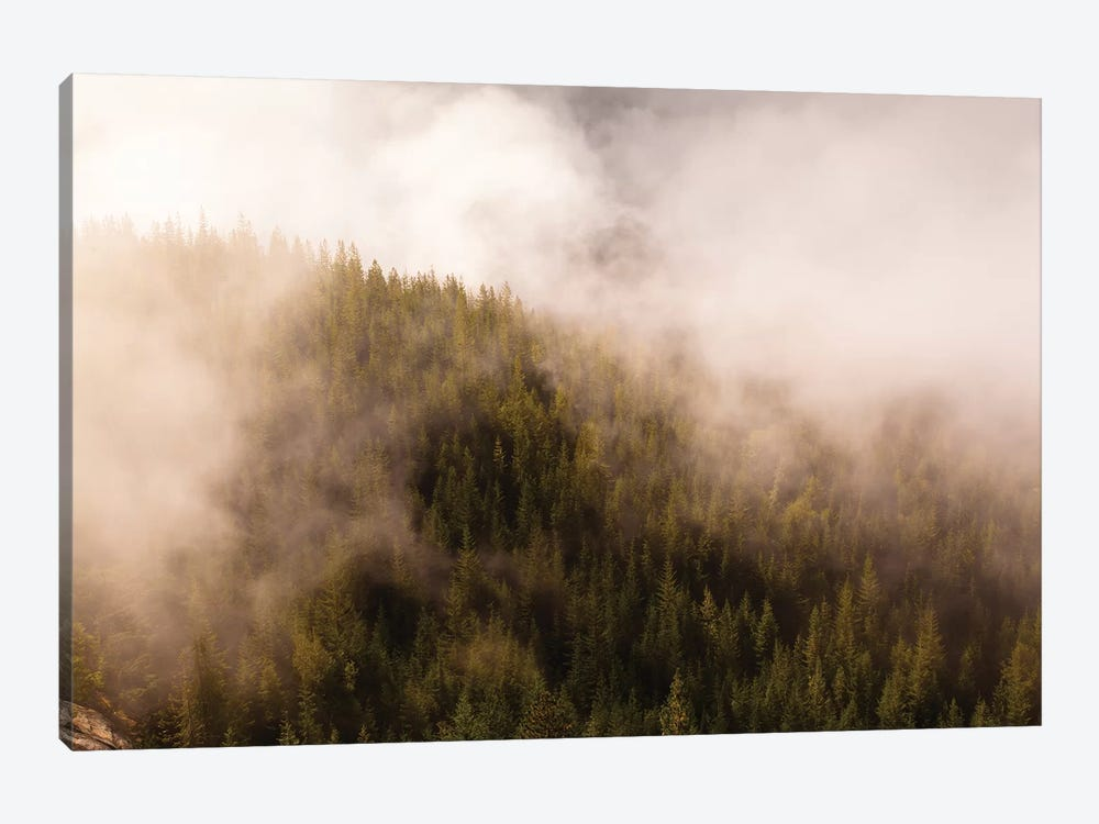 Mist Over The Trees In Squamish, British Columbia, Canada by Kristin Piljay 1-piece Canvas Artwork