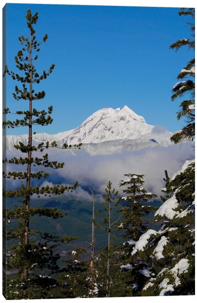 Mount Garibaldi From The Chief Overlook At The Summit Of The Sea To Sky Gondola Canvas Art Print