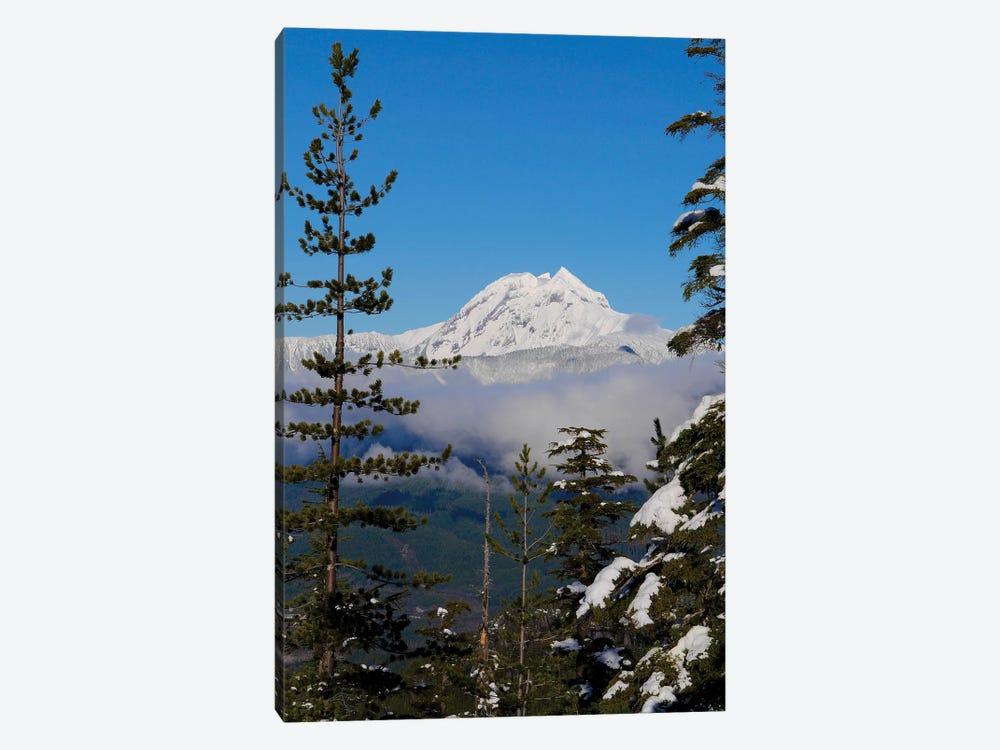 Mount Garibaldi From The Chief Overlook At The Summit Of The Sea To Sky Gondola 1-piece Canvas Print