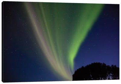 Northern Lights At Seljalandsfoss, Iceland Canvas Art Print