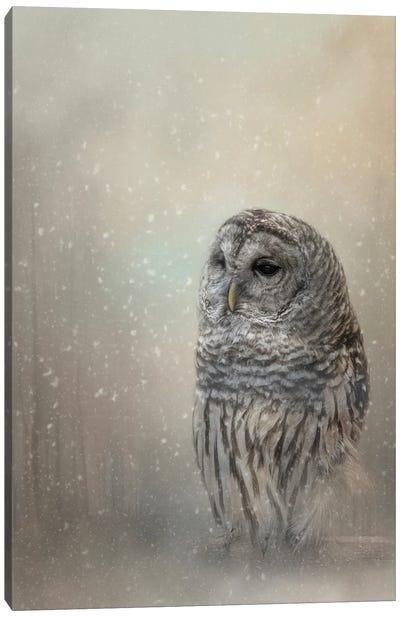 Silent Snow Fall Canvas Art Print