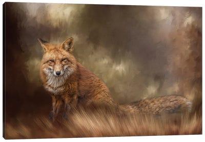 Autumn Journey Canvas Art Print