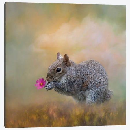 Spring's Gift Canvas Print #KPK114} by Kelley Parker Canvas Artwork