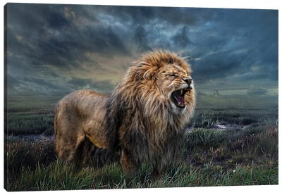 Storm King Canvas Art Print