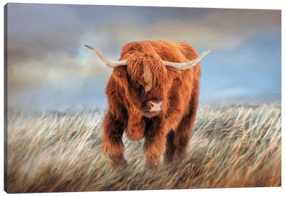 The Highlander Canvas Art Print