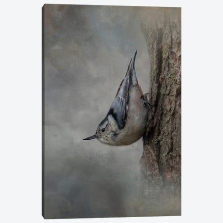 The Tree Walker Canvas Print #KPK140} by Kelley Parker Canvas Wall Art