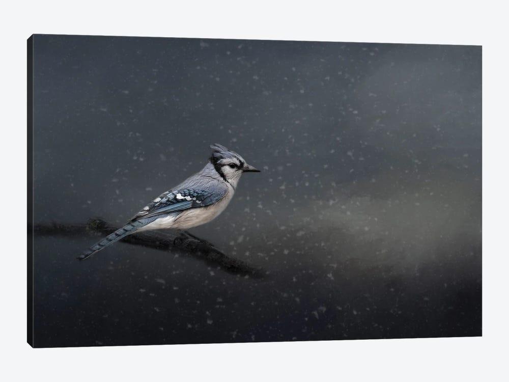 Winter Blues by Kelley Parker 1-piece Canvas Wall Art