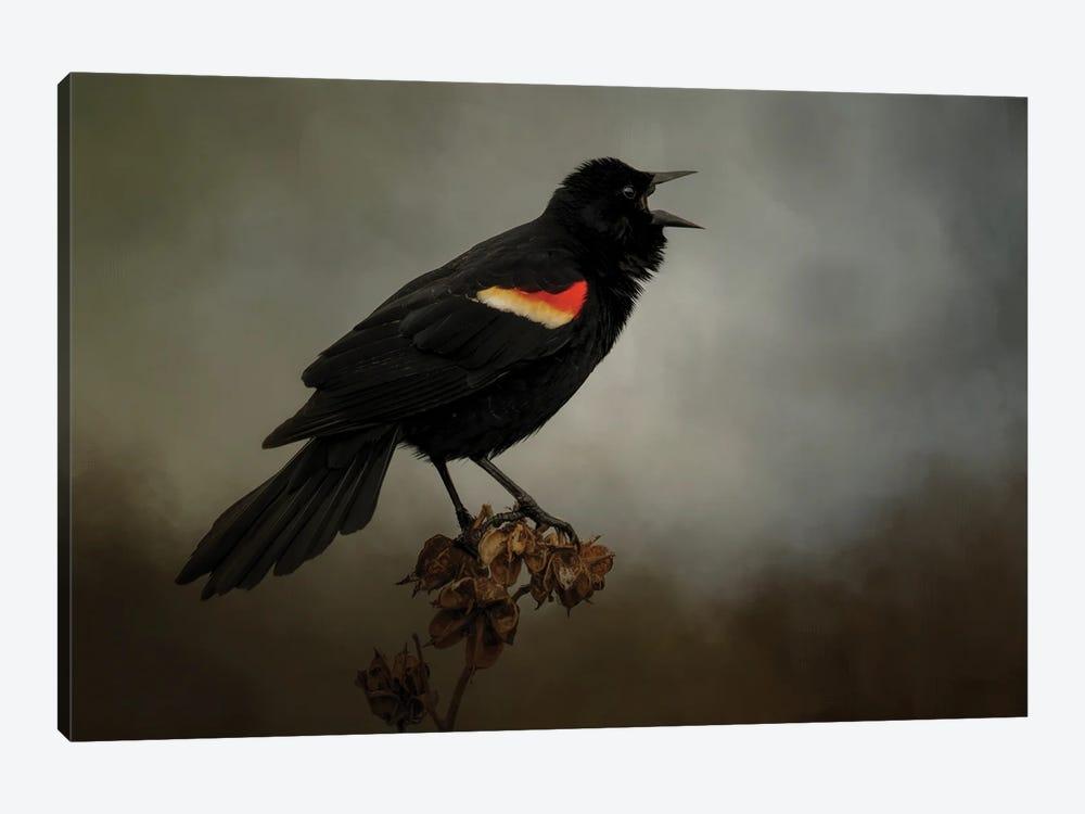 Blackbird Has Spoken by Kelley Parker 1-piece Art Print