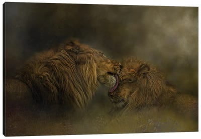 Brotherly Love Canvas Art Print