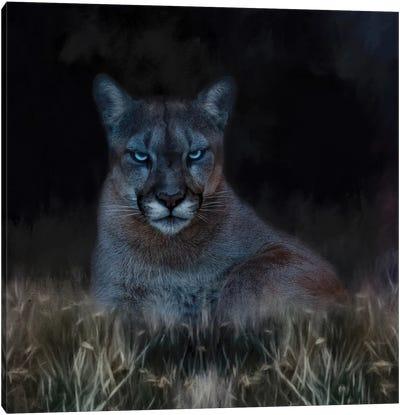 Dark Presence Canvas Art Print