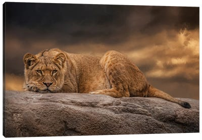 Day's End Canvas Art Print