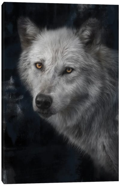 Defender Of The Lost Canvas Art Print