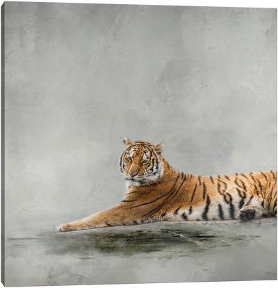 Down Time Canvas Art Print