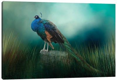 Enchanted Beauty Canvas Art Print