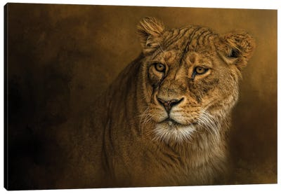 Ever Watchful Canvas Art Print