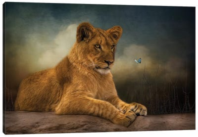 An Interesting Discovery Canvas Art Print