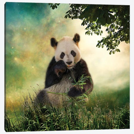 Panda Snack Canvas Print #KPK93} by Kelley Parker Canvas Art Print