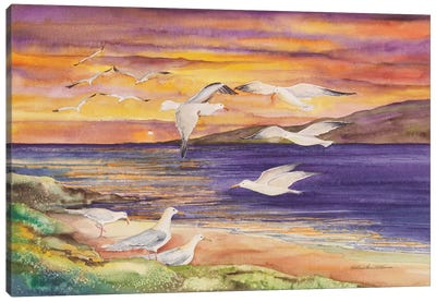 Seagull Sunset Canvas Art Print