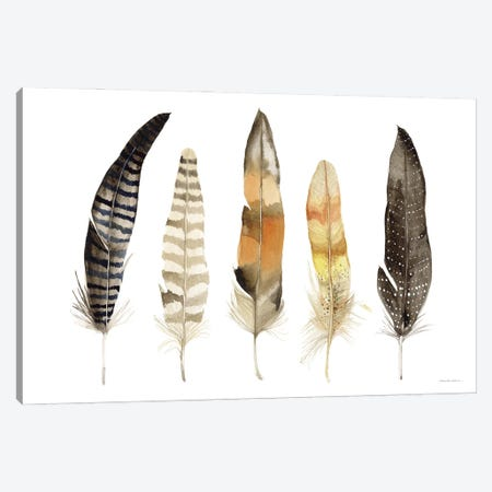 Natural Feathers Canvas Print #KPM33} by Kathleen Parr McKenna Canvas Print