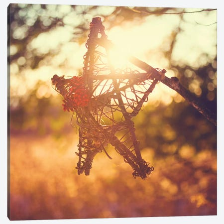 Morning Star Canvas Print #KPO16} by Kelly Poynter Canvas Wall Art