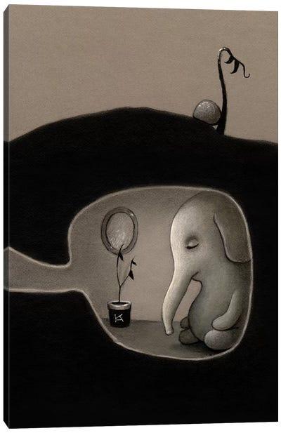 A Short Nap Canvas Art Print