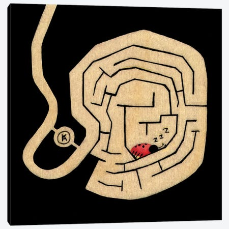 Sleepy Maze Canvas Print #KRA58} by Kristian Adam Canvas Wall Art