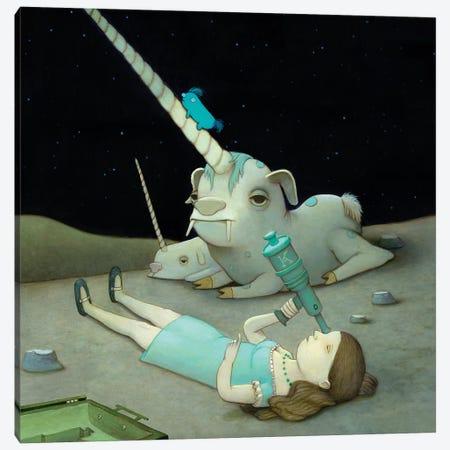 Stargazer Canvas Print #KRA61} by Kristian Adam Art Print