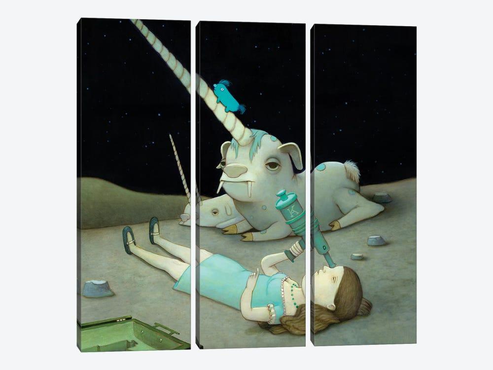 Stargazer by Kristian Adam 3-piece Canvas Wall Art