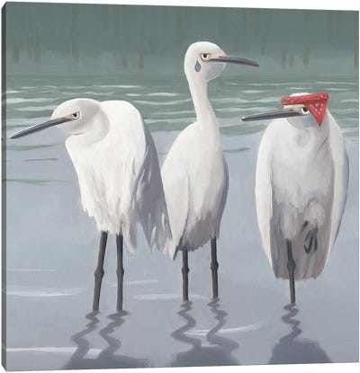 Egret Thugs Canvas Art Print