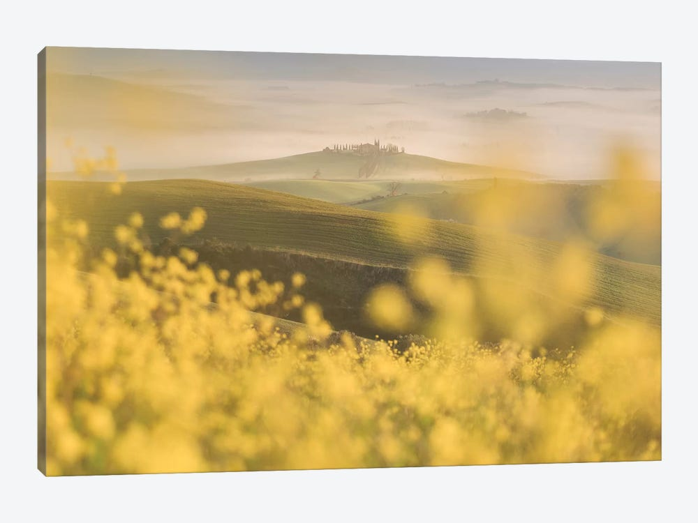 Spring In Tuscany IV 1-piece Canvas Art