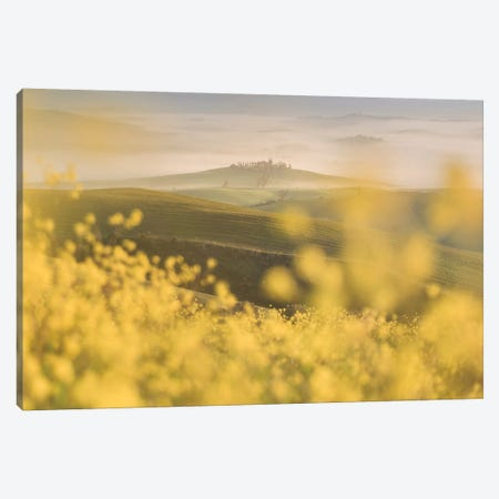 Spring In Tuscany IV Canvas Print #KRD100} by Daniel Kordan Canvas Art