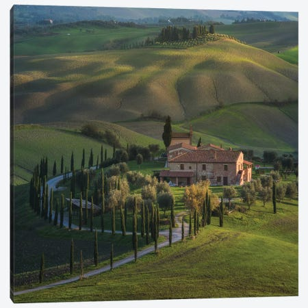 Spring In Tuscany V Canvas Print #KRD101} by Daniel Kordan Canvas Wall Art
