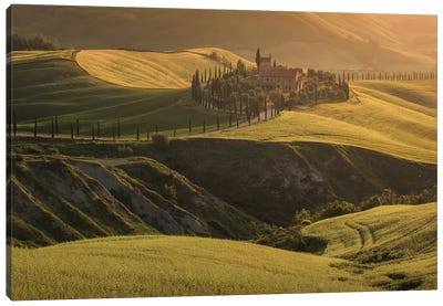 Spring In Tuscany VII Canvas Art Print