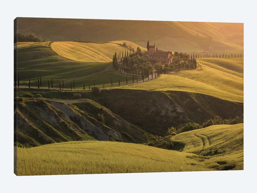 Spring In Tuscany VII by Daniel Kordan 1-piece Canvas Print