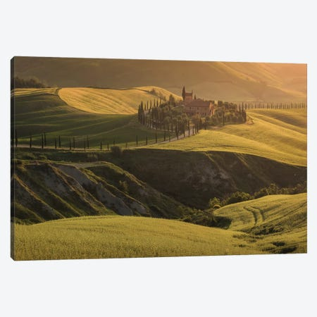 Spring In Tuscany VII Canvas Print #KRD103} by Daniel Kordan Canvas Art