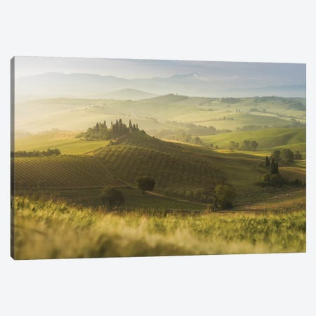 Spring In Tuscany IX Canvas Print #KRD105} by Daniel Kordan Canvas Print