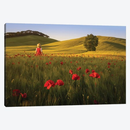 Spring In Tuscany XII Canvas Print #KRD108} by Daniel Kordan Canvas Wall Art