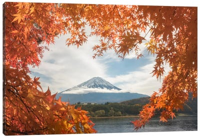 Autumn In Japan X Canvas Art Print