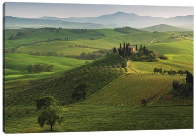 Spring In Tuscany XVI Canvas Art Print