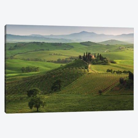 Spring In Tuscany XVI Canvas Print #KRD112} by Daniel Kordan Art Print