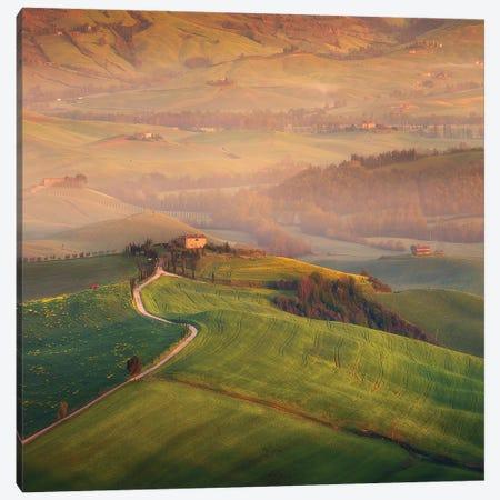 Spring In Tuscany XIX Canvas Print #KRD115} by Daniel Kordan Canvas Artwork