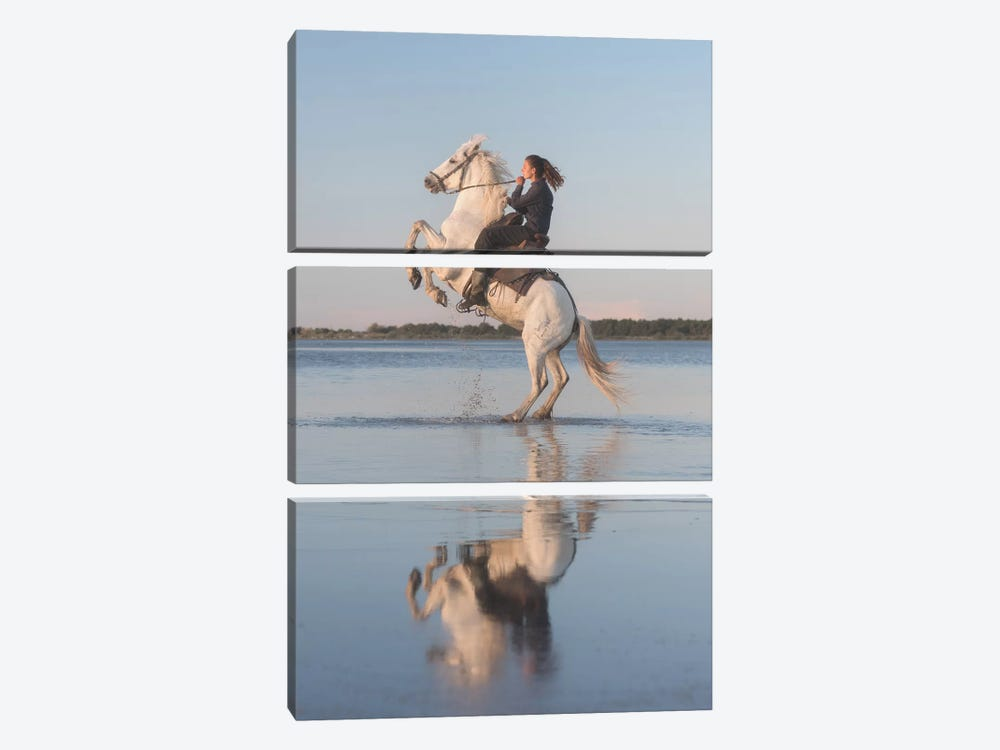 White Angels Of Camargue IV by Daniel Kordan 3-piece Canvas Print