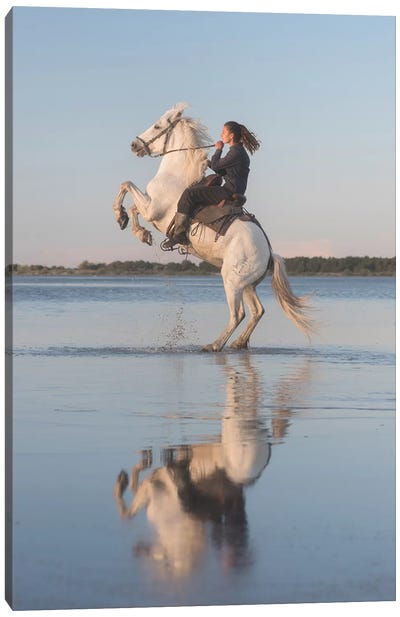 White Angels Of Camargue IV Canvas Art Print