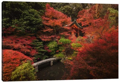 Autumn In Japan XII Canvas Art Print