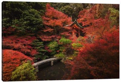 Autumn In Japan XII Canvas Art Print