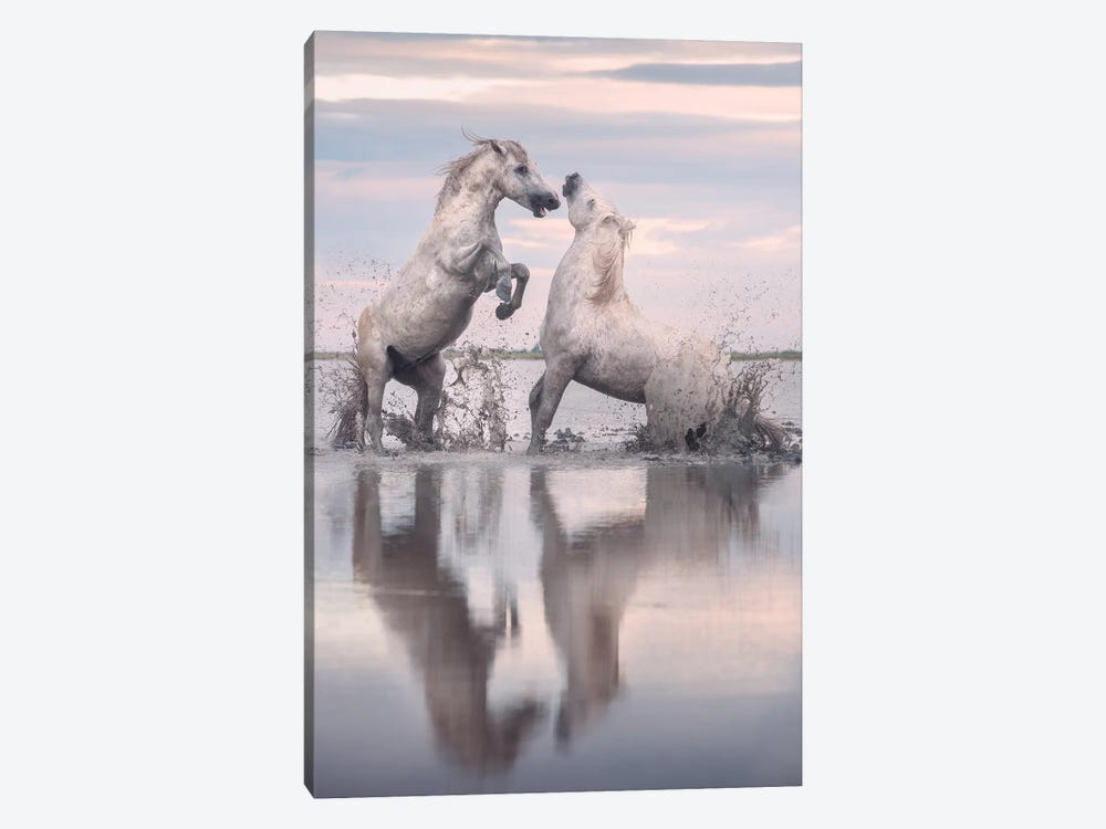 White Angels Of Camargue XXXIII by Daniel Kordan 1-piece Art Print